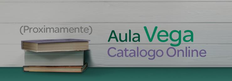 aula virtual, cursos online, formación bonificada.